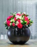 Carnation flower in black ceramic pot Royalty Free Stock Photos
