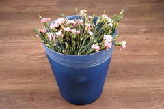Carnation flower in garbage can Stock Images