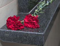 Carnation flowers on a memorial plate Royalty Free Stock Photos