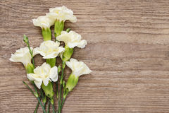 Carnation flowers on wooden background Stock Photos