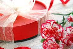 Carnation and Gift for party Royalty Free Stock Image