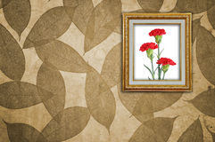 Carnation in Golden Frame Royalty Free Stock Photo