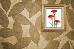 Carnation in Golden Frame Royalty Free Stock Photo
