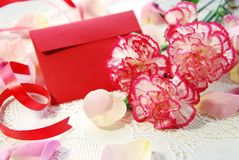 Carnation and greeting card Stock Image