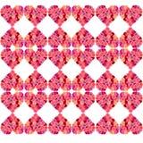 Carnation heart Royalty Free Stock Photo