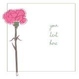 Carnation minimal card Royalty Free Stock Photo