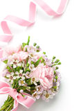 Carnation and pink ribbon Stock Photos