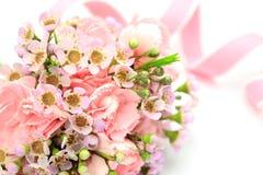 Carnation and pink ribbon Stock Image