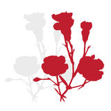 Carnation silhouette Royalty Free Stock Photography