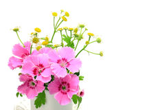 Carnation and small chrysanthemum Stock Photo