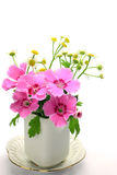 Carnation and small chrysanthemum Stock Photos