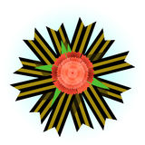 Carnation on the St. George ribbon. Royalty Free Stock Photography