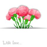 Carnation vector flowers design Royalty Free Stock Photos