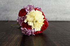 carnations Fotos de Stock Royalty Free