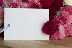 Carnations and Card for Greeting Stock Images