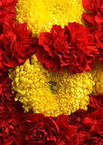 Carnations and chrysanthemums Royalty Free Stock Photo