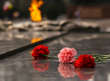 Carnations flowers on the monument of eternal fire - Victory Day. Concept stock photos
