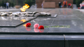 Carnations flowers on the monument of eternal fire - Victory Day Royalty Free Stock Photography