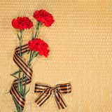 Carnations and Georgievsky tape Stock Images
