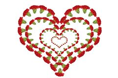 Carnations Heart Royalty Free Stock Photos