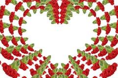 Carnations Heart Royalty Free Stock Photo