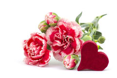 Carnations and heart Stock Photos