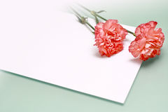 Carnations and a note stock images