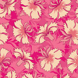 Carnations pattern Stock Images