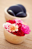 Carnations and pebbles Stock Photo