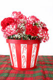 Carnations of Red and White Royalty Free Stock Photography