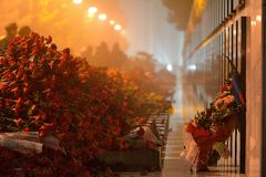 Carnations at 20th January monument, Baku, Azerbaijan Royalty Free Stock Photography
