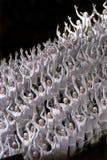 Carnaval à Rio Photo stock