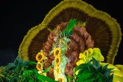 """Carnaval †2016 """"Imperatriz Leopoldinense Royaltyfri Bild"""