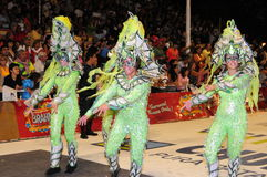 Carnaval 2008 Imagens de Stock Royalty Free