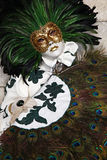 Carnaval 2011 de Venecia Foto de archivo libre de regalías