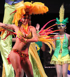 Carnaval 11 Royalty-vrije Stock Afbeeldingen