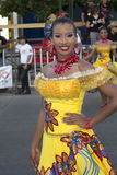 Carnaval Lizenzfreie Stockfotos