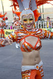 Carnaval 免版税图库摄影