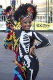 Carnaval Стоковое Изображение RF