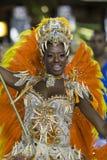 Carnaval 2014 Lizenzfreie Stockbilder