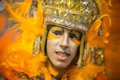 Carnaval 2014 Stockbild