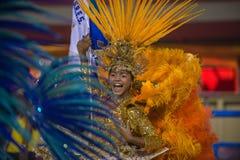 Carnaval 2014 Royaltyfri Bild