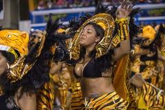 Carnaval 2014 Arkivfoton