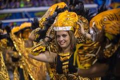 Carnaval 2014 Arkivbilder
