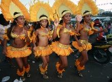 Carnaval Brasil do festival do boi do meu de Bumba Fotos de Stock Royalty Free