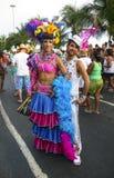 Carnaval brasileiro imagem de stock royalty free