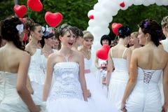 Carnaval-bruiden stock foto