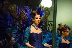 Carnaval chez l'Espagne dans la soirée Images stock