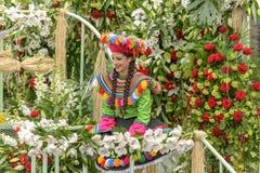 Carnaval da flor em agradável, França Foto de Stock Royalty Free