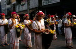 Carnaval da flor em Tailândia Fotos de Stock